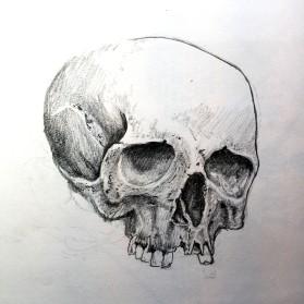 The Skull - Graphite